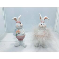 Rabbit boy/girl